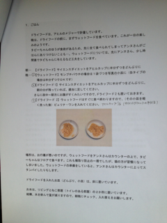image-20130601105422.png
